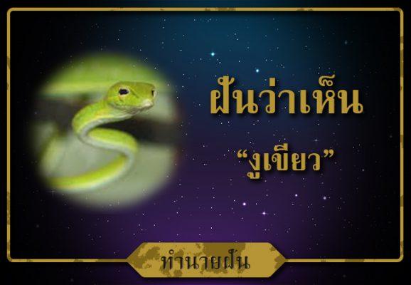 ทำนาย ฝันเห็น งูเขียว