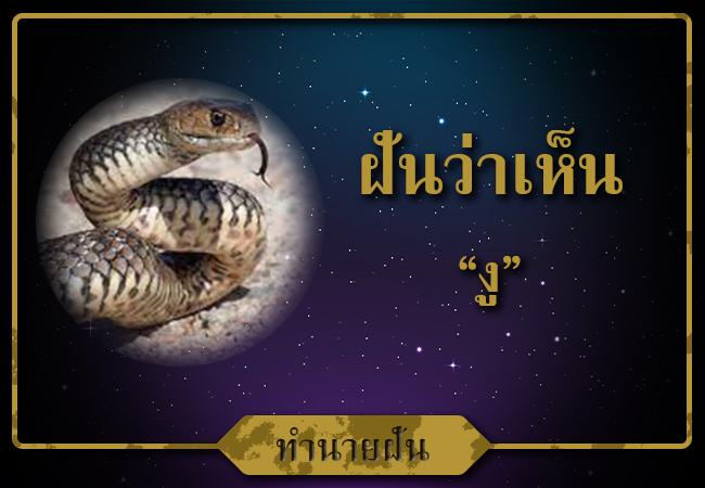 ฝันเห็น งู จะได้เนื้อคุ่ไหม
